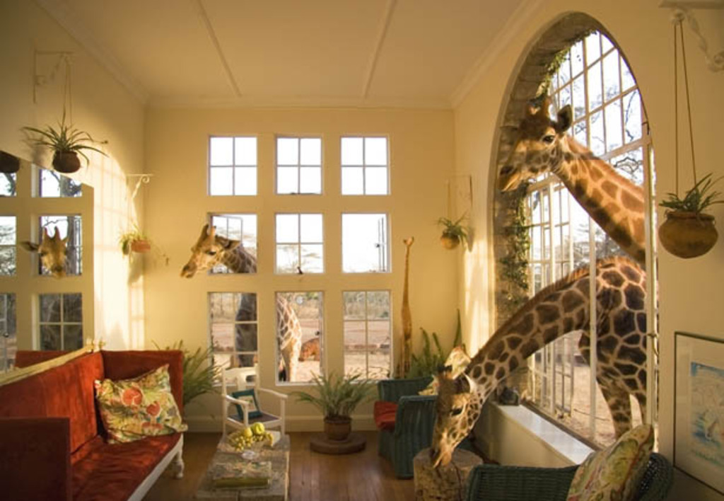 Hotel con jirafas hoteles originales for Quirky hotels