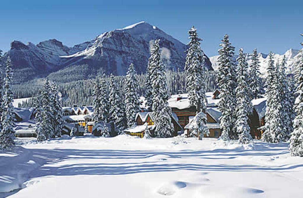Hotel en un parque natural con caba as y vistas hacia las monta as hoteles originales - Cabana invierno ...