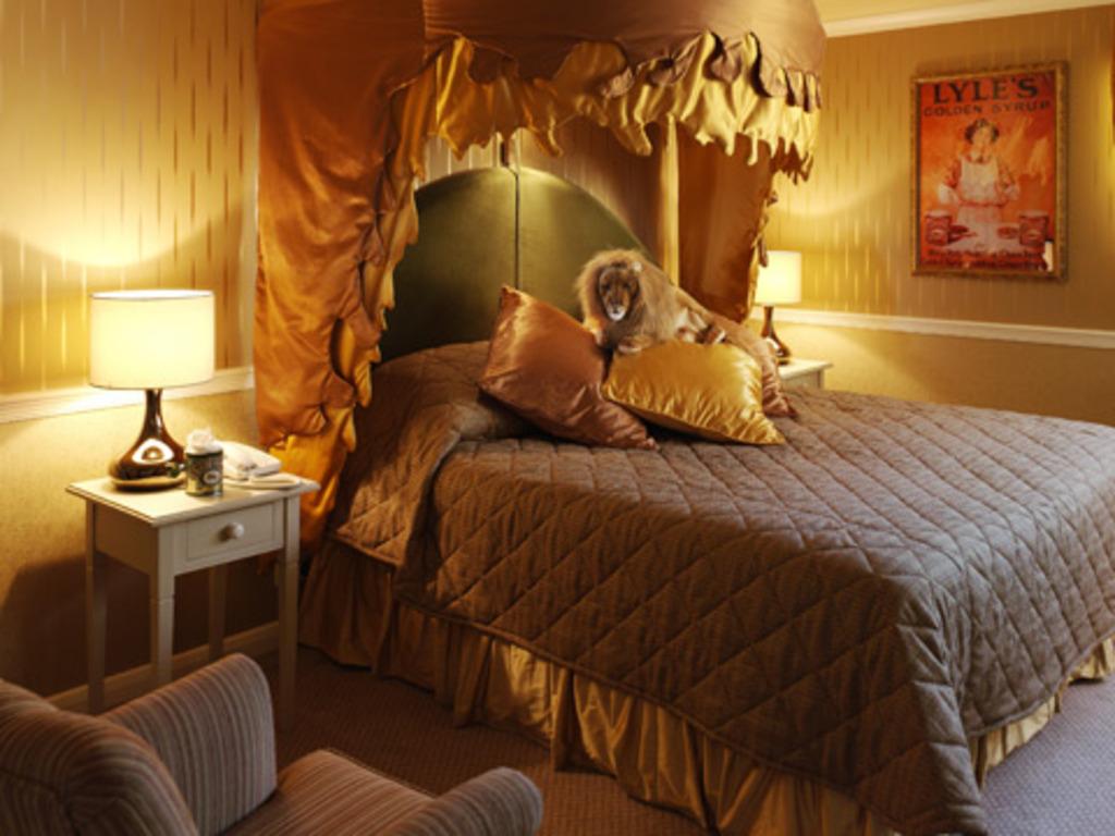 Habitaciones distintas hoteles originales - Pared decorada con fotos ...