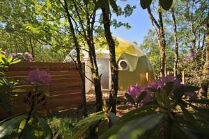 Entorno del hotel-Ecopod-Retreat